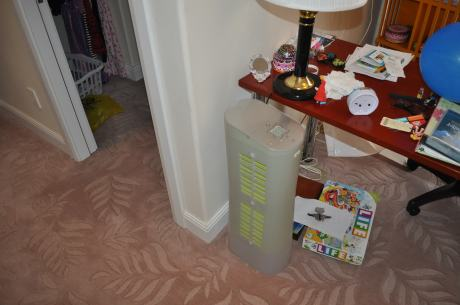 The smaller air cleaner in Cassidy's bedroom
