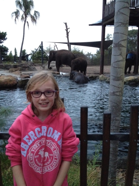 Stephanie and the elephants at Taronga Zoo Roar and Snore