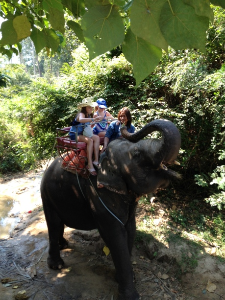We rode, and fed, elephants again in Thailand