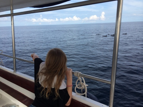 Stephanie pointing out dolphins that swan around and under our boat.